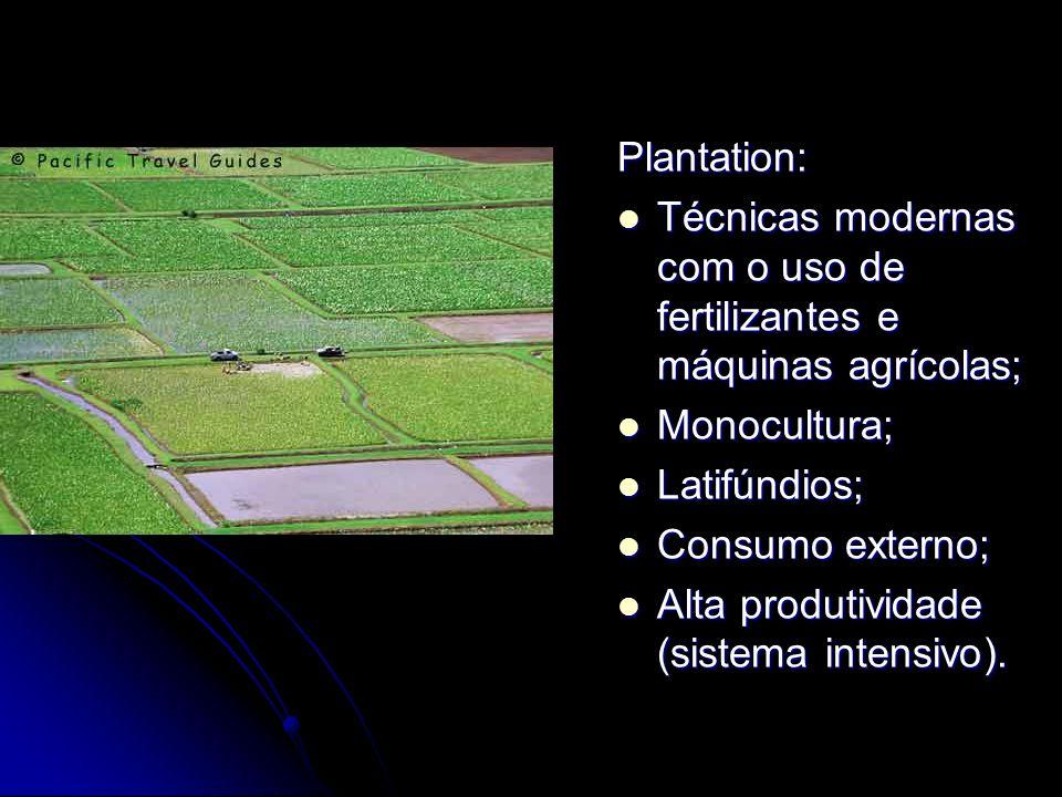 Plantation: Técnicas modernas com o uso de fertilizantes e máquinas agrícolas; Técnicas modernas com o uso de fertilizantes e máquinas agrícolas; Mono