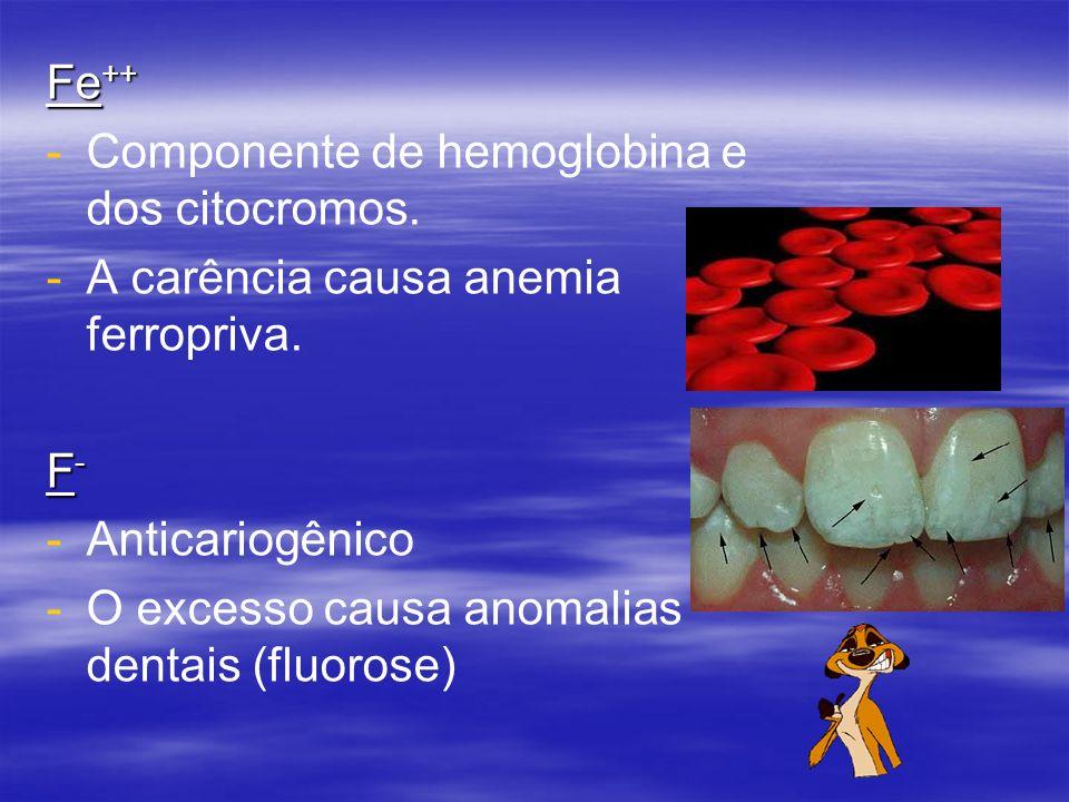 Fe ++ - -Componente de hemoglobina e dos citocromos. - -A carência causa anemia ferropriva. F-F-F-F- - -Anticariogênico - -O excesso causa anomalias d