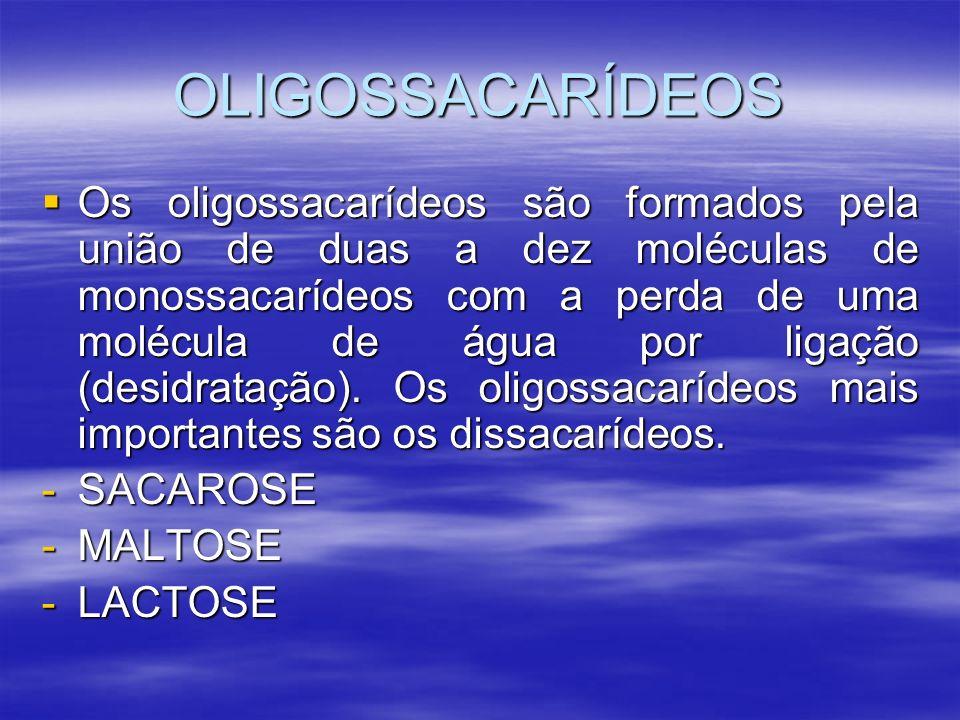 OLIGOSSACARÍDEOS Os oligossacarídeos são formados pela união de duas a dez moléculas de monossacarídeos com a perda de uma molécula de água por ligaçã