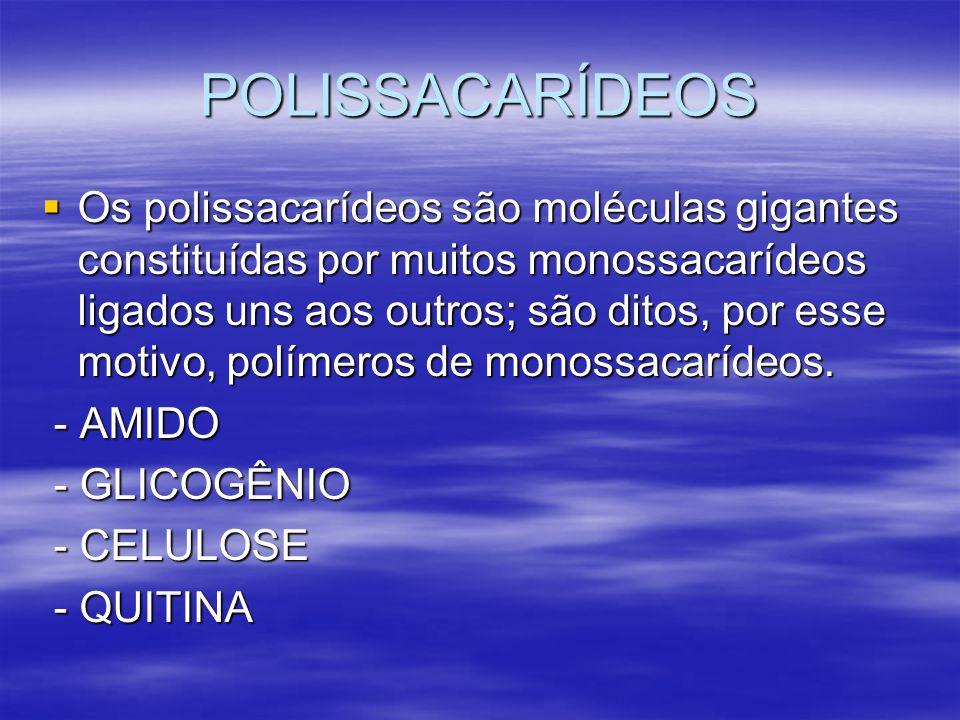 POLISSACARÍDEOS Os polissacarídeos são moléculas gigantes constituídas por muitos monossacarídeos ligados uns aos outros; são ditos, por esse motivo,