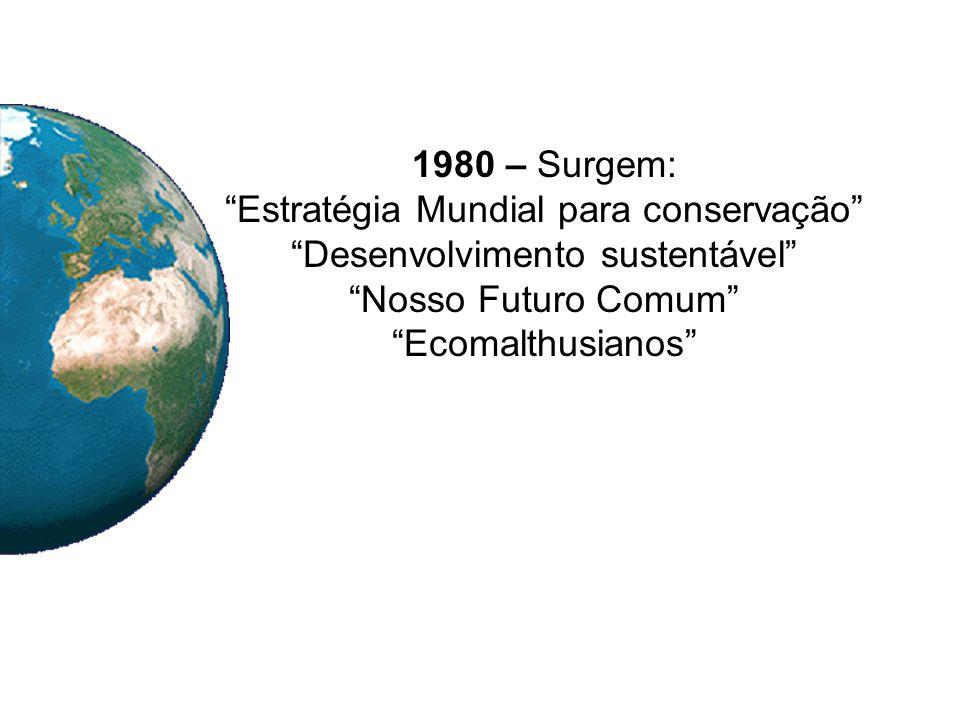 1980 – Surgem: Estratégia Mundial para conservação Desenvolvimento sustentável Nosso Futuro Comum Ecomalthusianos