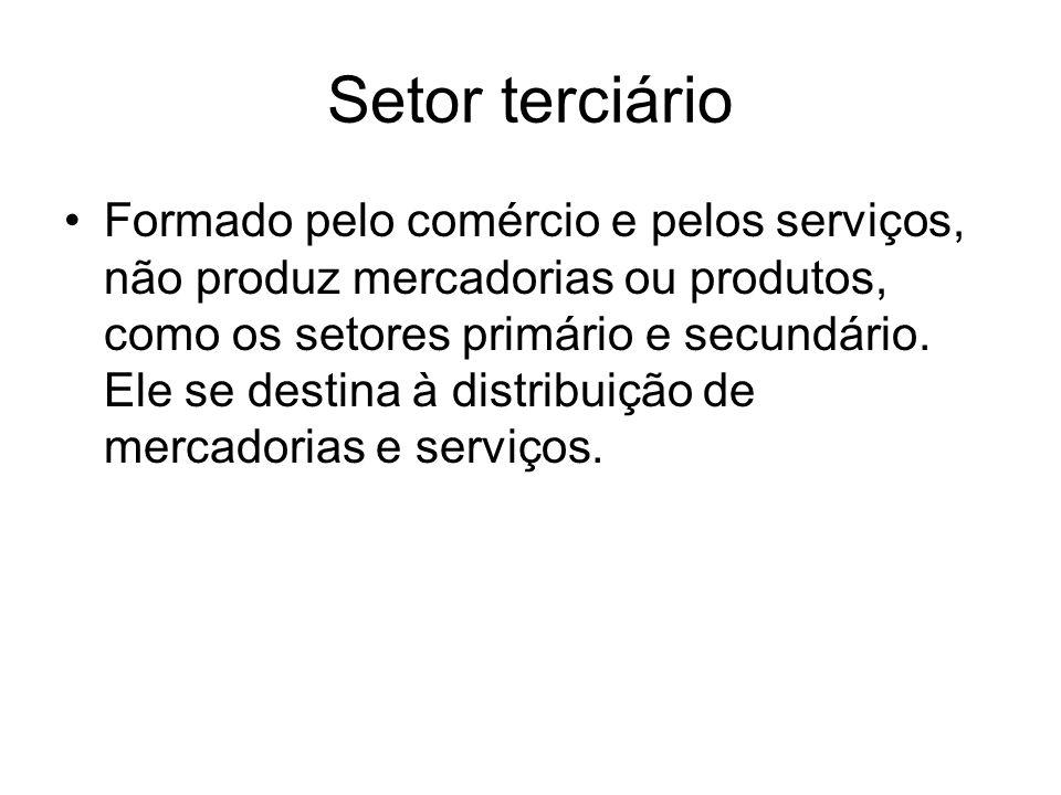 Setor terciário Formado pelo comércio e pelos serviços, não produz mercadorias ou produtos, como os setores primário e secundário. Ele se destina à di