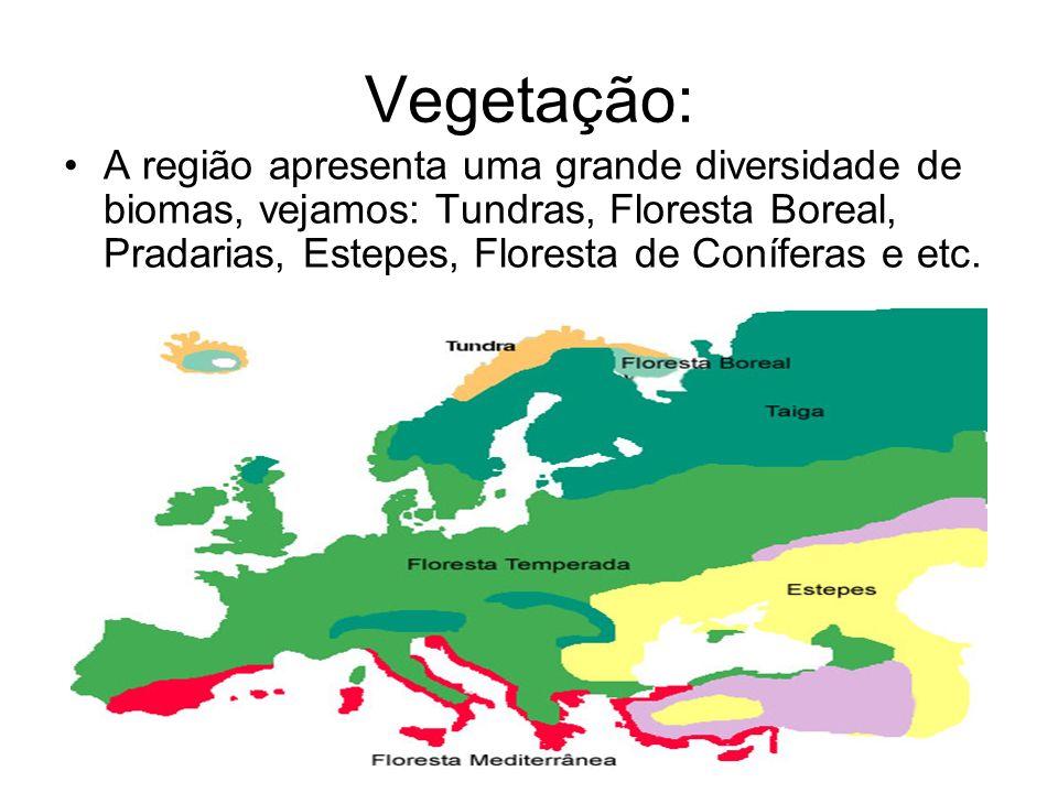 Vegetação: A região apresenta uma grande diversidade de biomas, vejamos: Tundras, Floresta Boreal, Pradarias, Estepes, Floresta de Coníferas e etc.