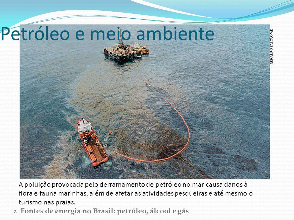 Petróleo e meio ambiente A poluição provocada pelo derramamento de petróleo no mar causa danos à flora e fauna marinhas, além de afetar as atividades