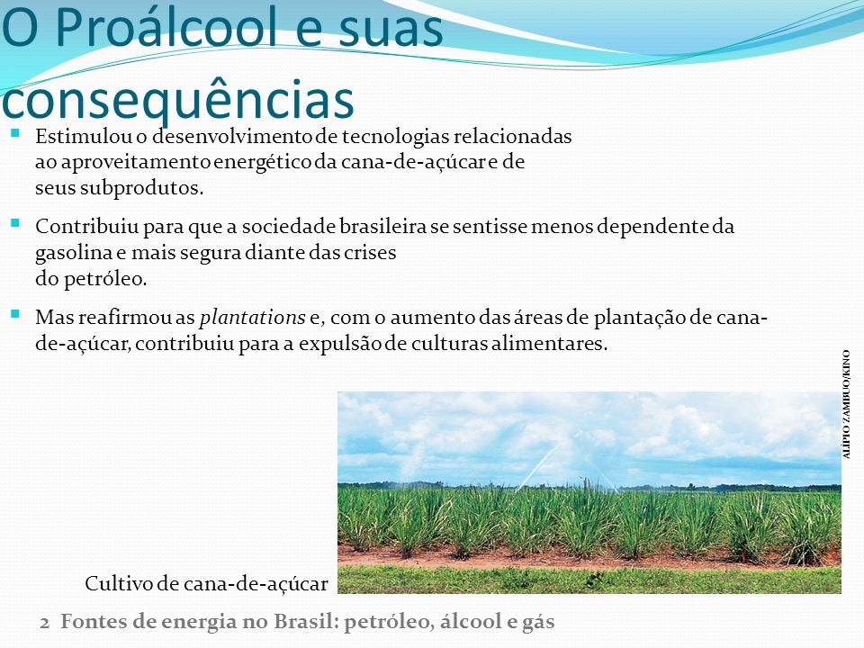 O Proálcool e suas consequências Estimulou o desenvolvimento de tecnologias relacionadas ao aproveitamento energético da cana-de-açúcar e de seus subp