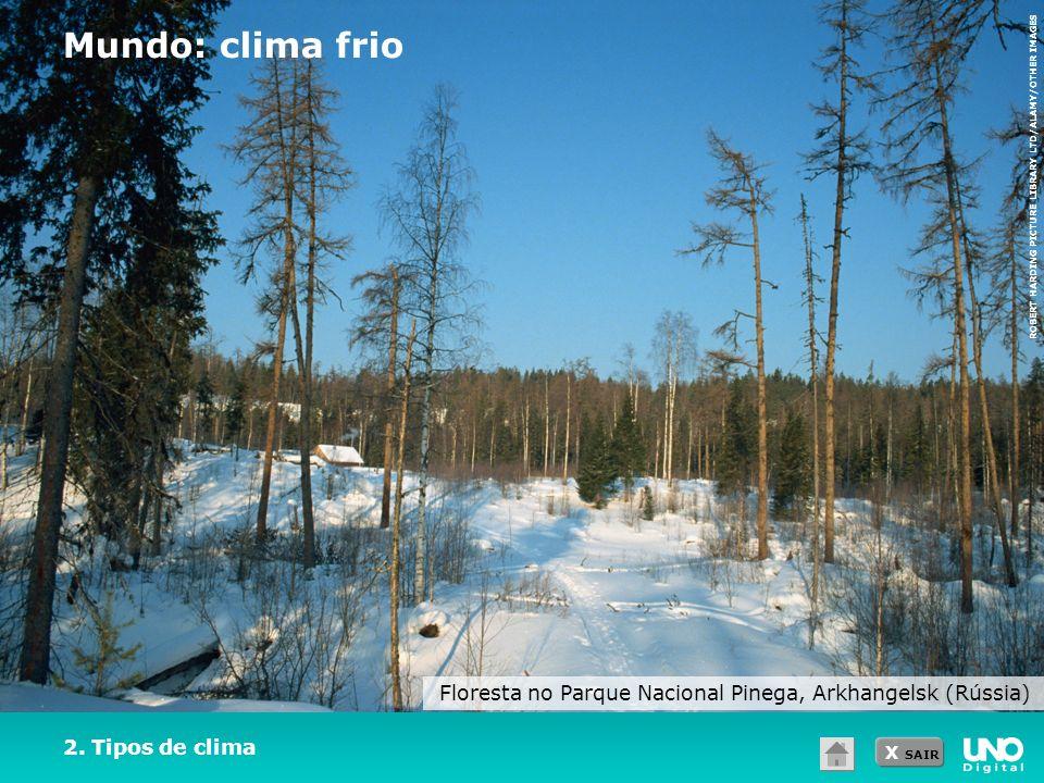 X SAIR 2. Tipos de clima Mundo: clima frio Floresta no Parque Nacional Pinega, Arkhangelsk (Rússia) ROBERT HARDING PICTURE LIBRARY LTD/ALAMY/OTHER IMA