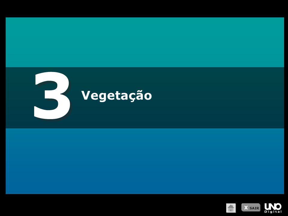 3 3 Vegetação X SAIR