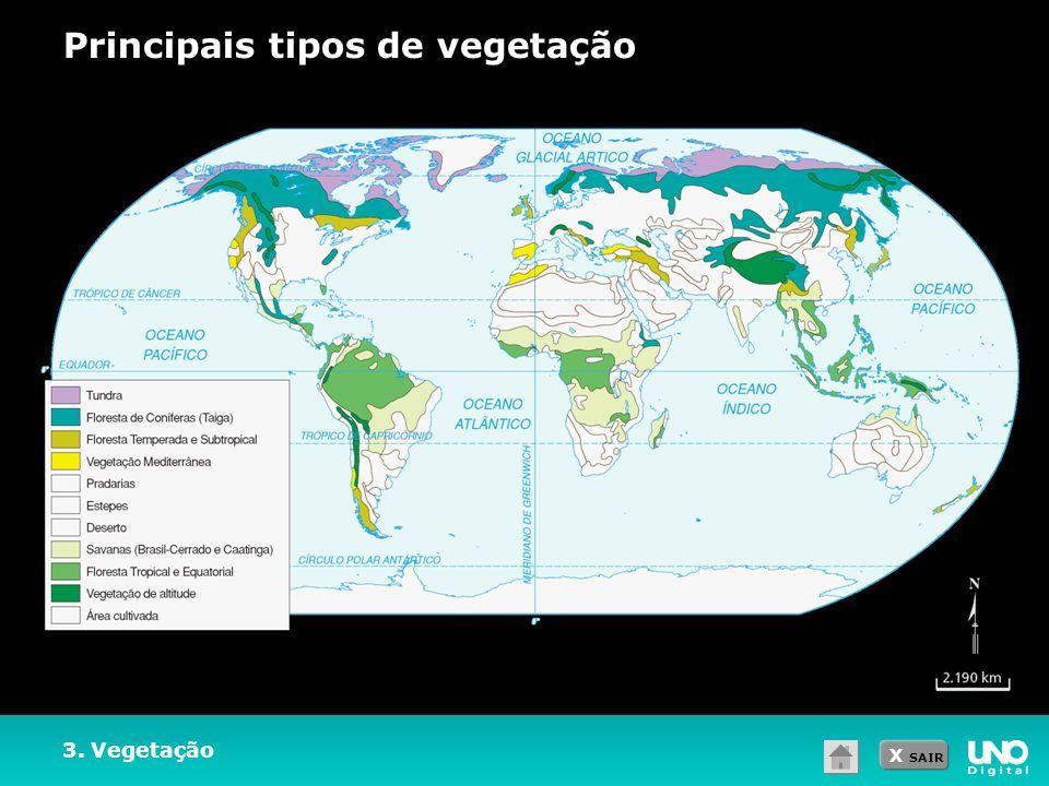 X SAIR 3. Vegetação Principais tipos de vegetação