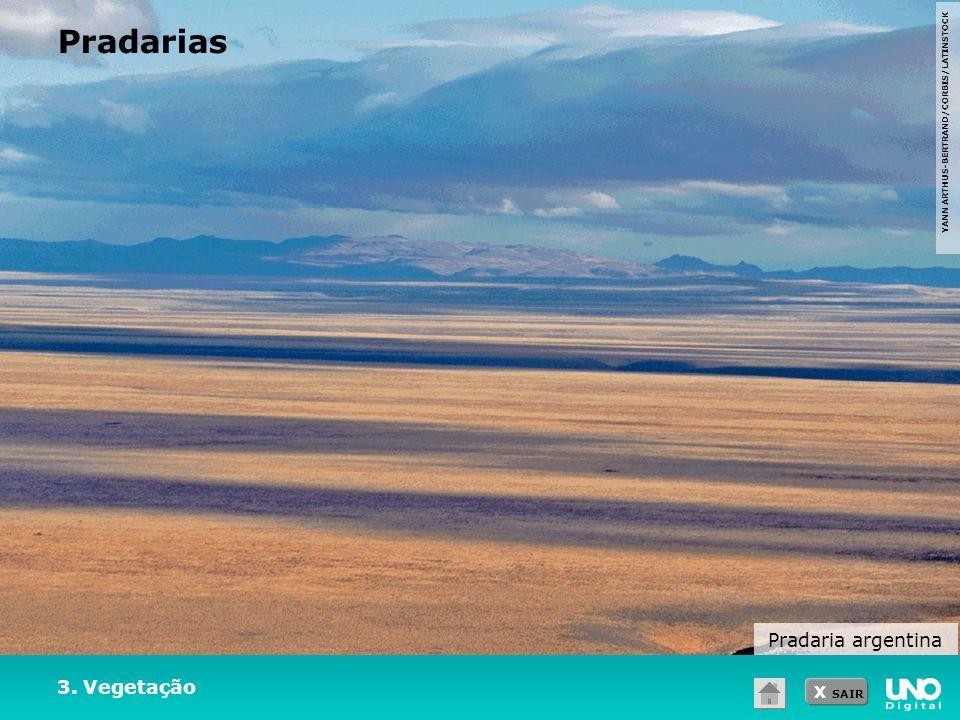 X SAIR YANN ARTHUS-BERTRAND/CORBIS/LATINSTOCK 3. Vegetação Pradarias Pradaria argentina