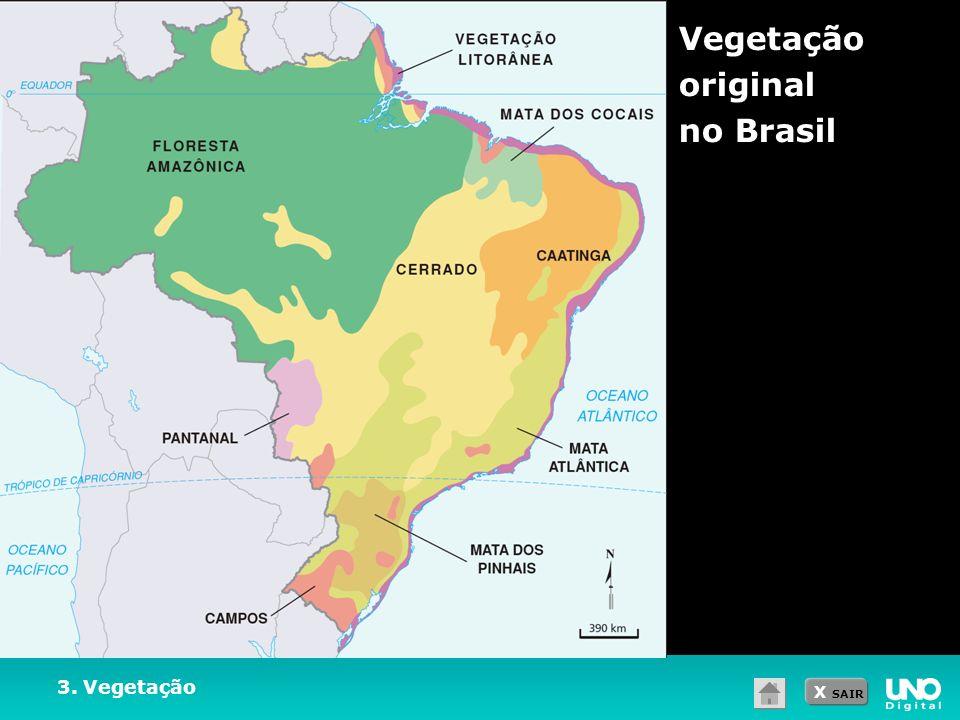 X SAIR 3. Vegetação Vegetação original no Brasil