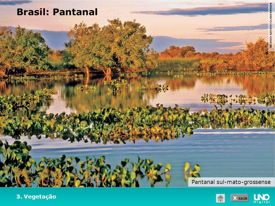 X SAIR 3. Vegetação Brasil: Pantanal RICARDO AZOURY/OLHAR IMAGEM Pantanal sul-mato-grossense