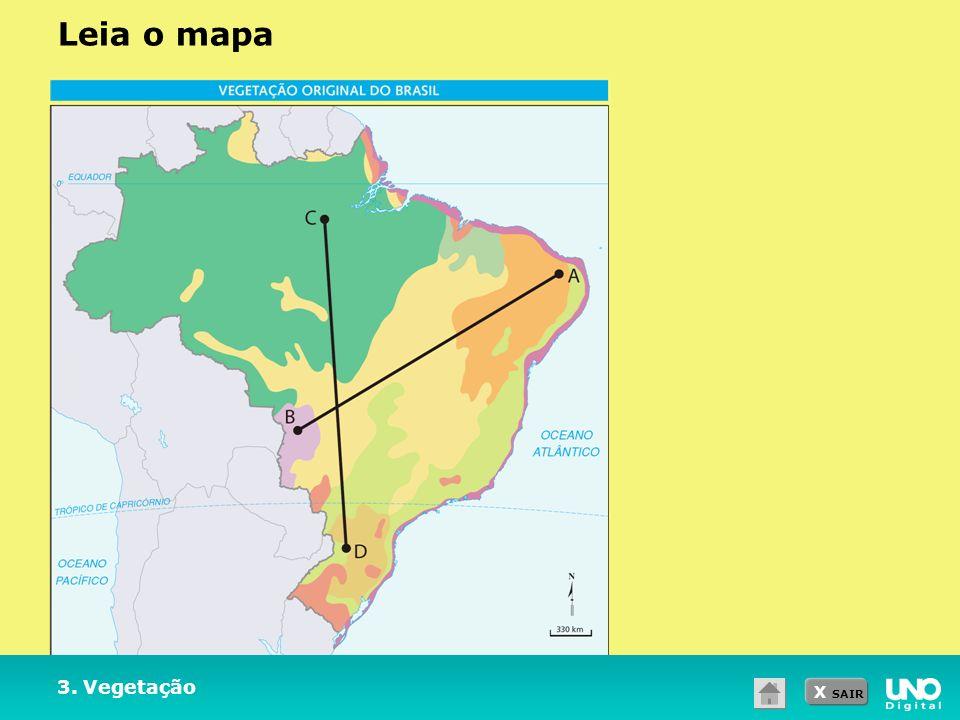 X SAIR 3. Vegetação Leia o mapa