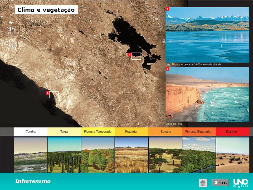 X SAIR Inforresumo Clima e vegetação