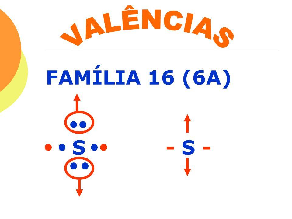 FAMÍLIA 16 (6A) S - S -