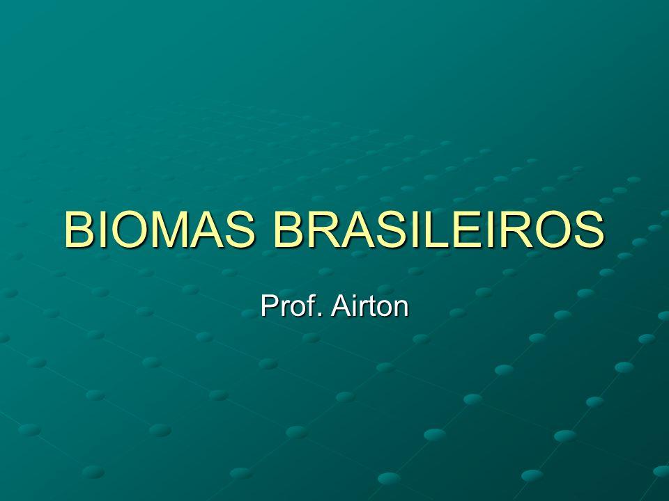 BIOMAS BRASILEIROS Prof. Airton