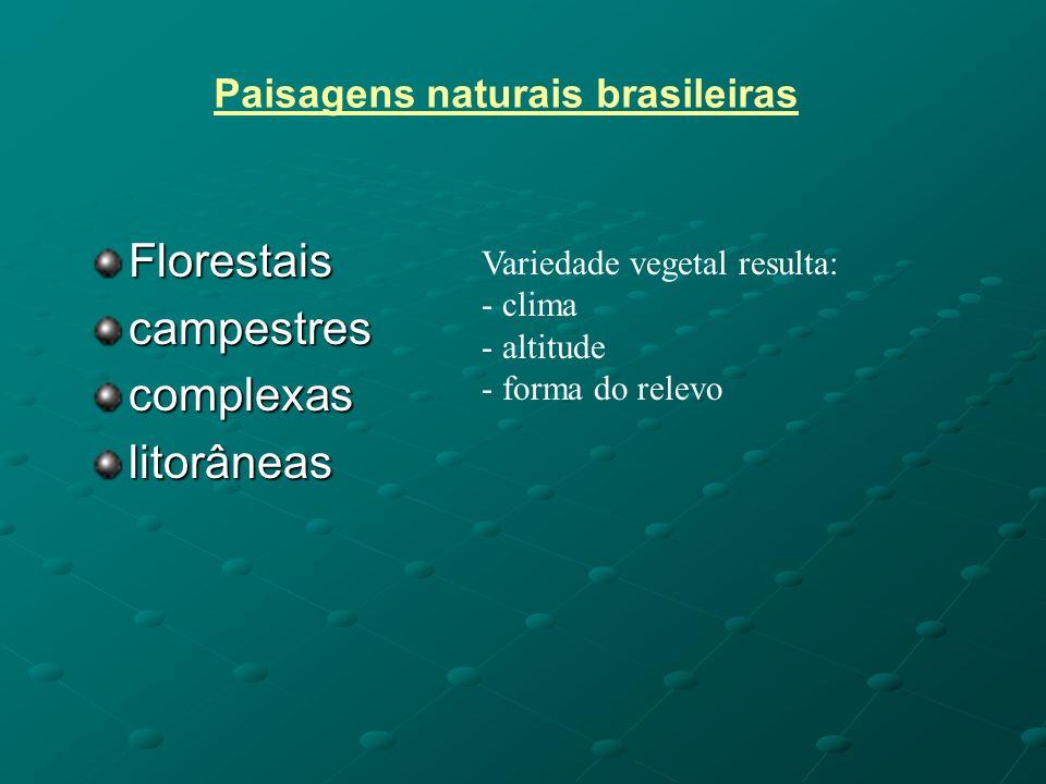 Paisagens naturais brasileiras Florestaiscampestrescomplexaslitorâneas Variedade vegetal resulta: - clima - altitude - forma do relevo