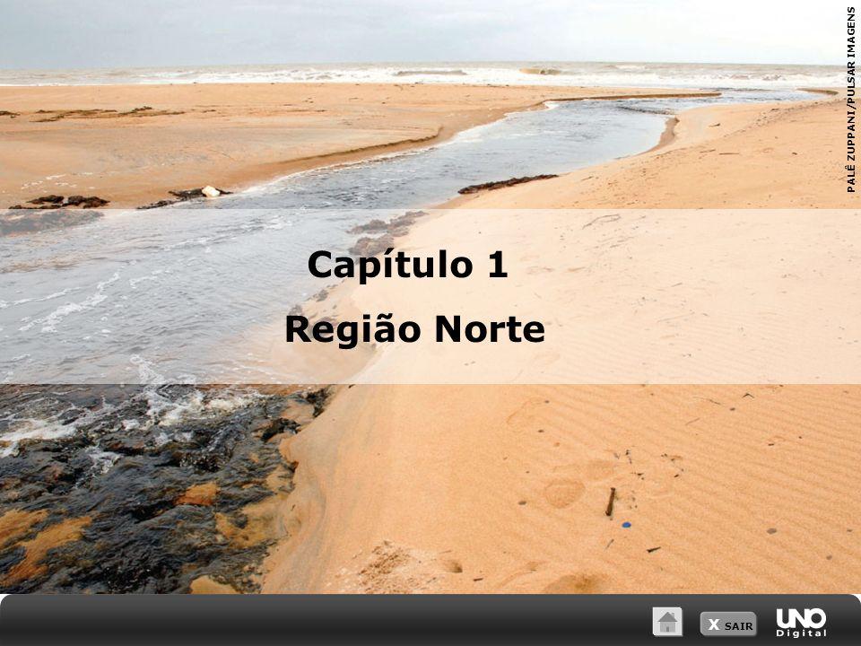 X SAIR PALÊ ZUPPANI/PULSAR IMAGENS Capítulo 1 Região Norte