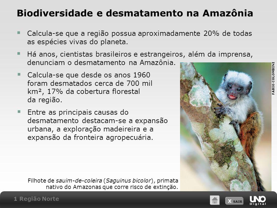 X SAIR Biodiversidade e desmatamento na Amazônia Calcula-se que a região possua aproximadamente 20% de todas as espécies vivas do planeta. Há anos, ci