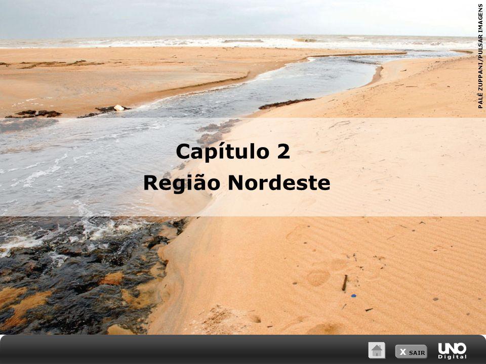 X SAIR PALÊ ZUPPANI/PULSAR IMAGENS Capítulo 2 Região Nordeste