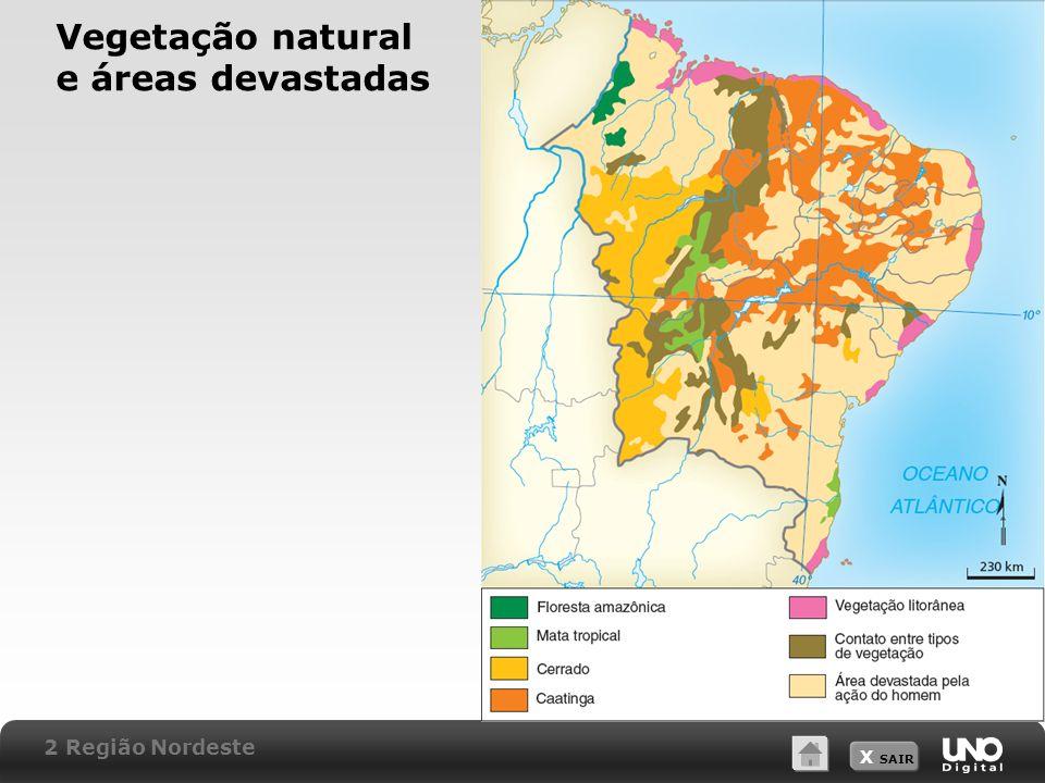 X SAIR Vegetação natural e áreas devastadas 2 Região Nordeste