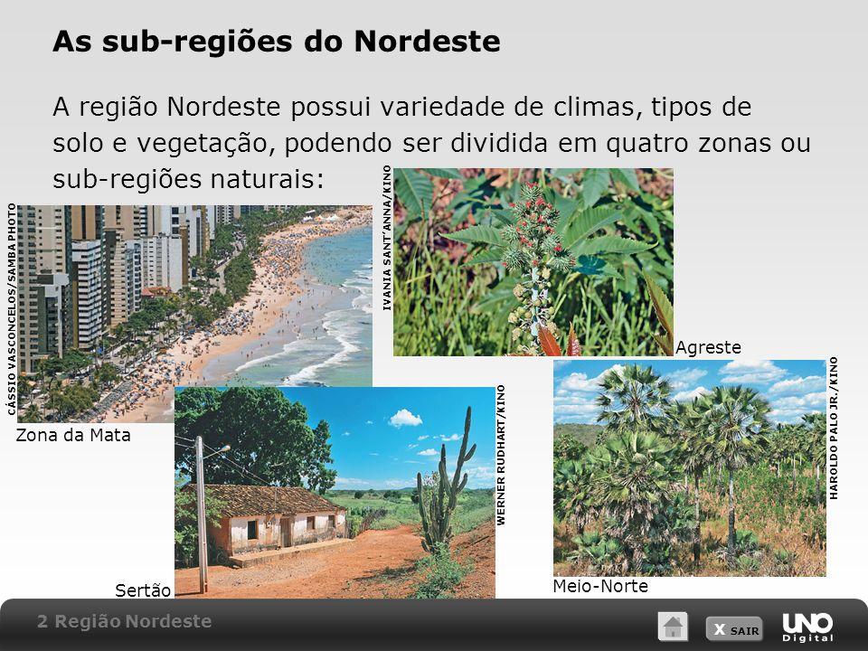 X SAIR As sub-regiões do Nordeste A região Nordeste possui variedade de climas, tipos de solo e vegetação, podendo ser dividida em quatro zonas ou sub