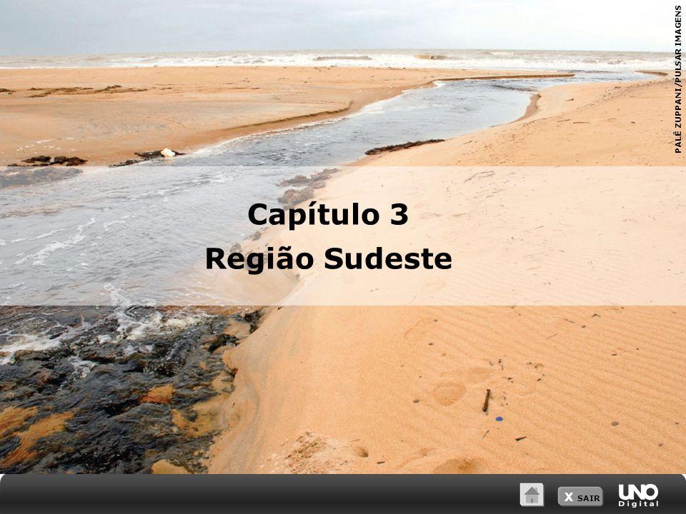 X SAIR PALÊ ZUPPANI/PULSAR IMAGENS Capítulo 3 Região Sudeste