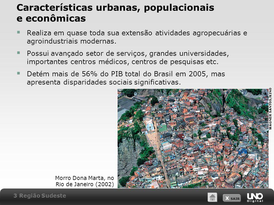 X SAIR Características urbanas, populacionais e econômicas Realiza em quase toda sua extensão atividades agropecuárias e agroindustriais modernas. Pos