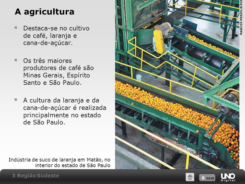 X SAIR A agricultura Destaca-se no cultivo de café, laranja e cana-de-açúcar. Os três maiores produtores de café são Minas Gerais, Espírito Santo e Sã