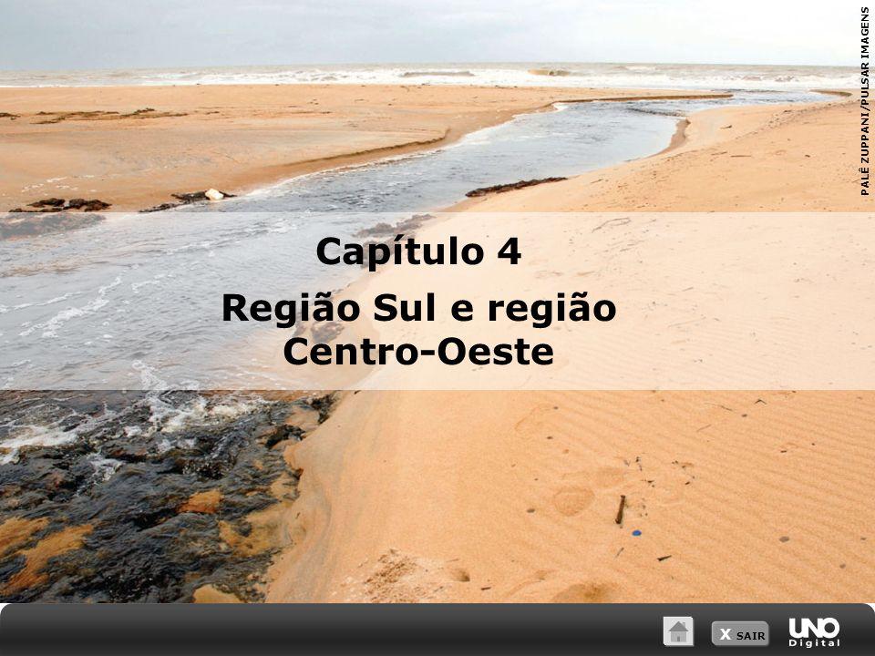 X SAIR PALÊ ZUPPANI/PULSAR IMAGENS Capítulo 4 Região Sul e região Centro-Oeste