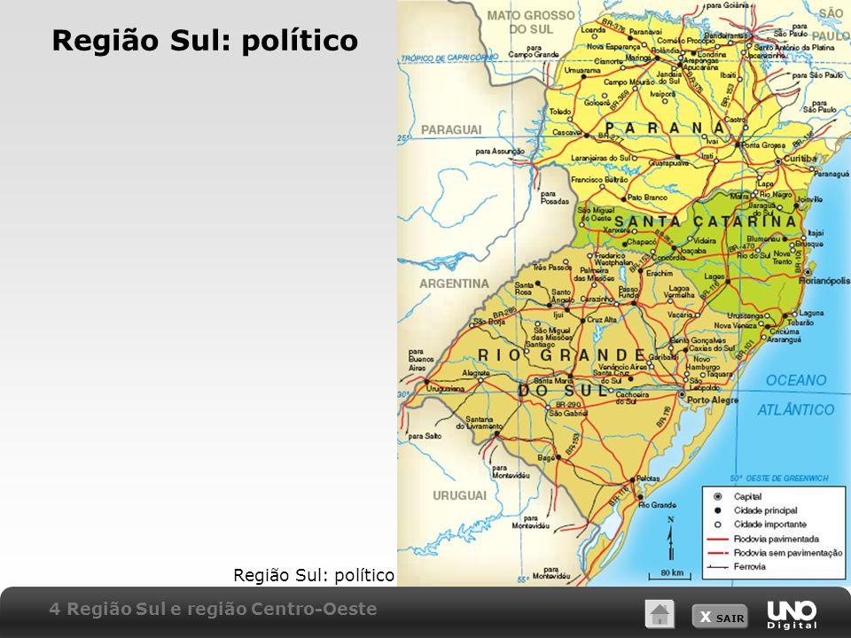 X SAIR Região Sul: político 4 Região Sul e região Centro-Oeste