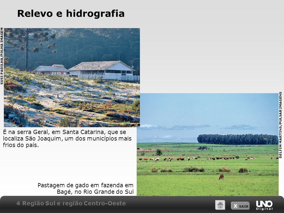 X SAIR Relevo e hidrografia É na serra Geral, em Santa Catarina, que se localiza São Joaquim, um dos municípios mais frios do país. Pastagem de gado e