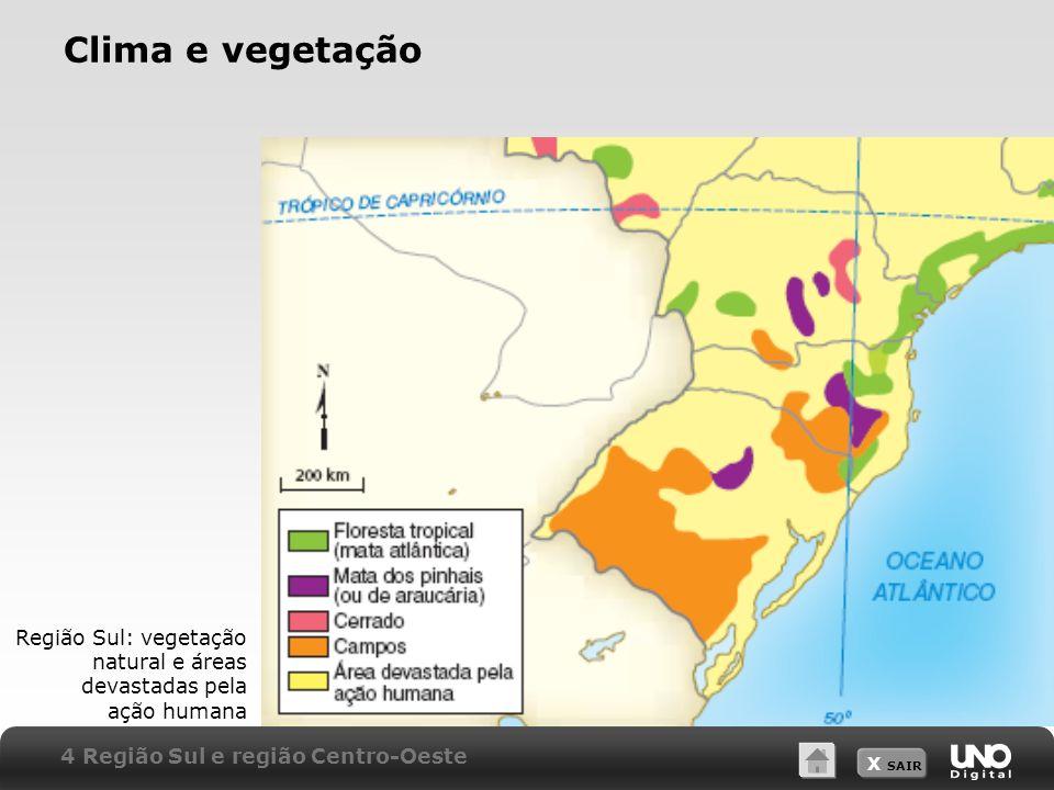 X SAIR Clima e vegetação Região Sul: vegetação natural e áreas devastadas pela ação humana 4 Região Sul e região Centro-Oeste
