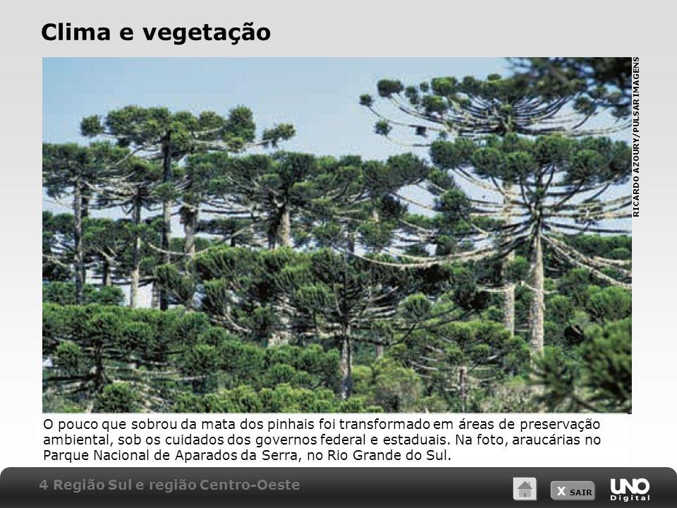 X SAIR Clima e vegetação O pouco que sobrou da mata dos pinhais foi transformado em áreas de preservação ambiental, sob os cuidados dos governos feder