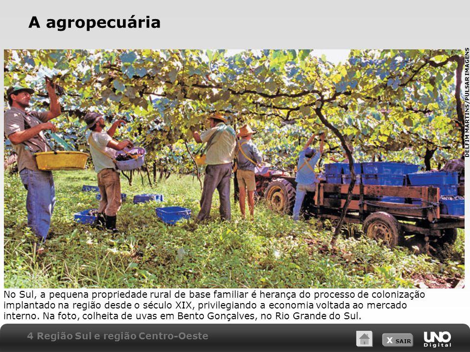X SAIR A agropecuária No Sul, a pequena propriedade rural de base familiar é herança do processo de colonização implantado na região desde o século XI