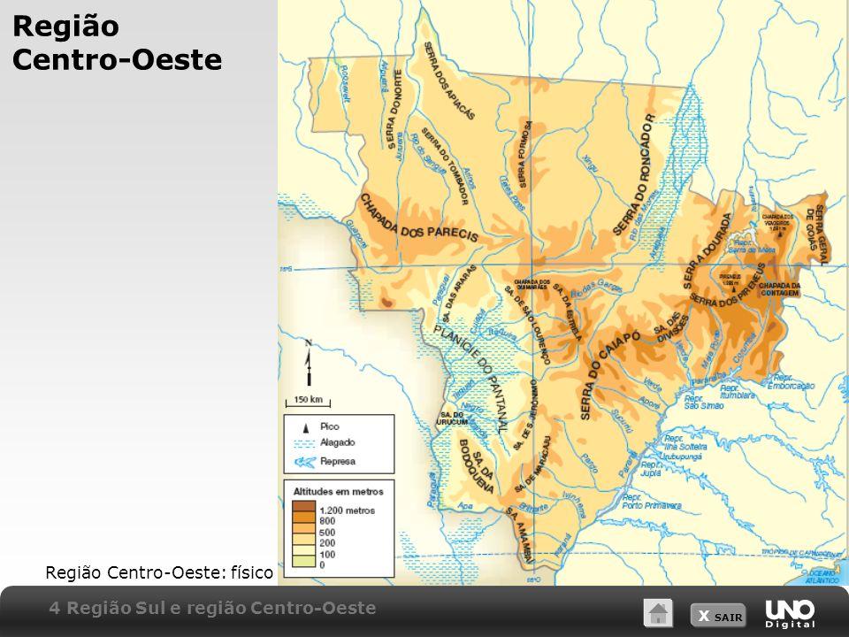 X SAIR Região Centro-Oeste Região Centro-Oeste: físico 4 Região Sul e região Centro-Oeste