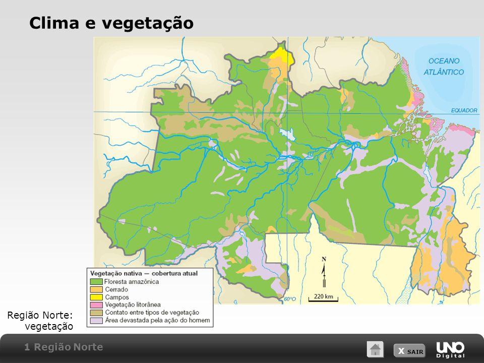 X SAIR Clima e vegetação Região Norte: vegetação 1 Região Norte