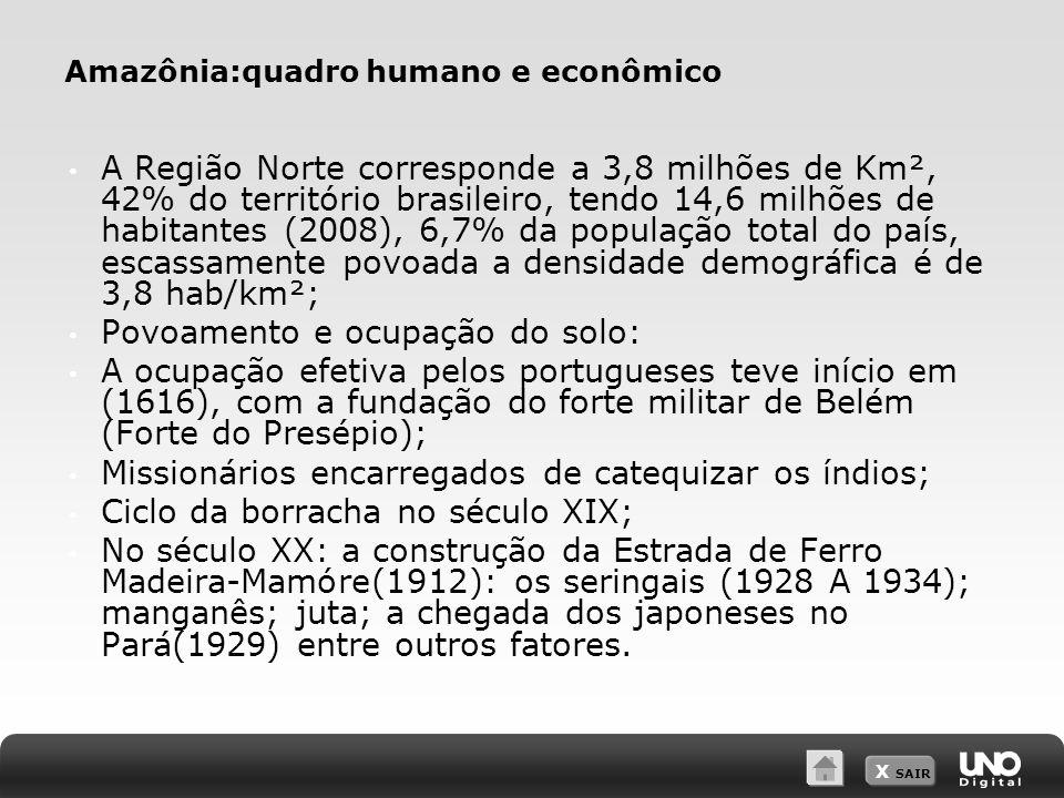 X SAIR Amazônia:quadro humano e econômico A Região Norte corresponde a 3,8 milhões de Km², 42% do território brasileiro, tendo 14,6 milhões de habitan