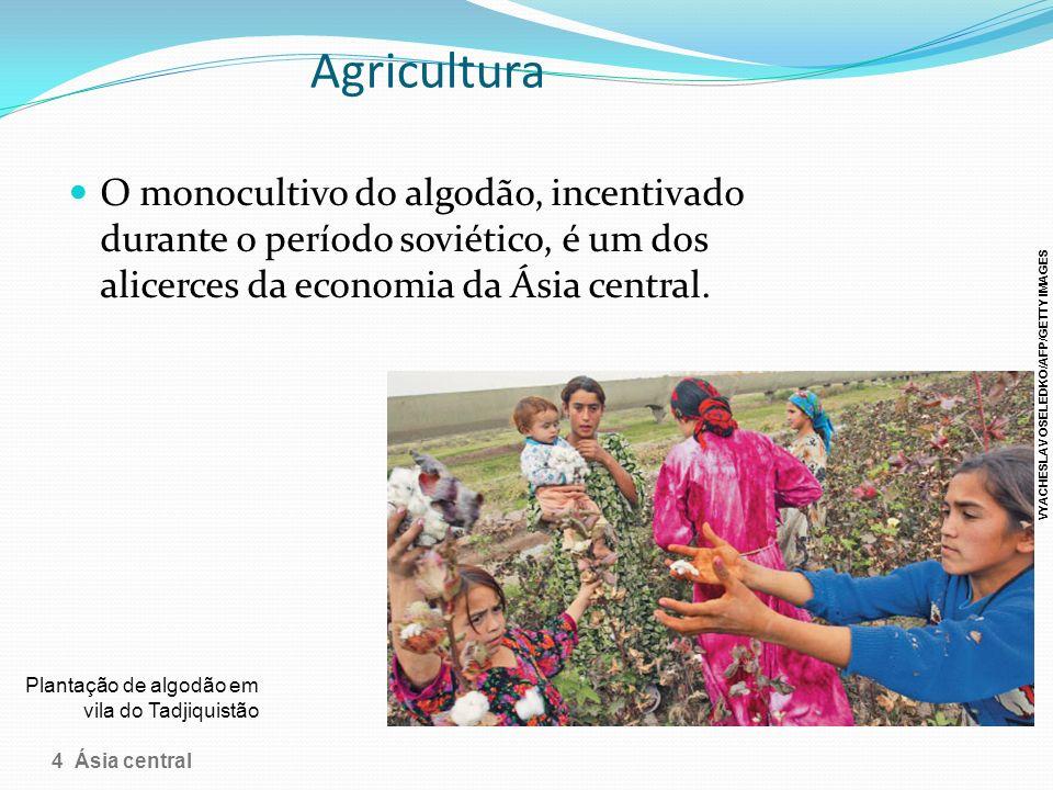 Agricultura O monocultivo do algodão, incentivado durante o período soviético, é um dos alicerces da economia da Ásia central. Plantação de algodão em