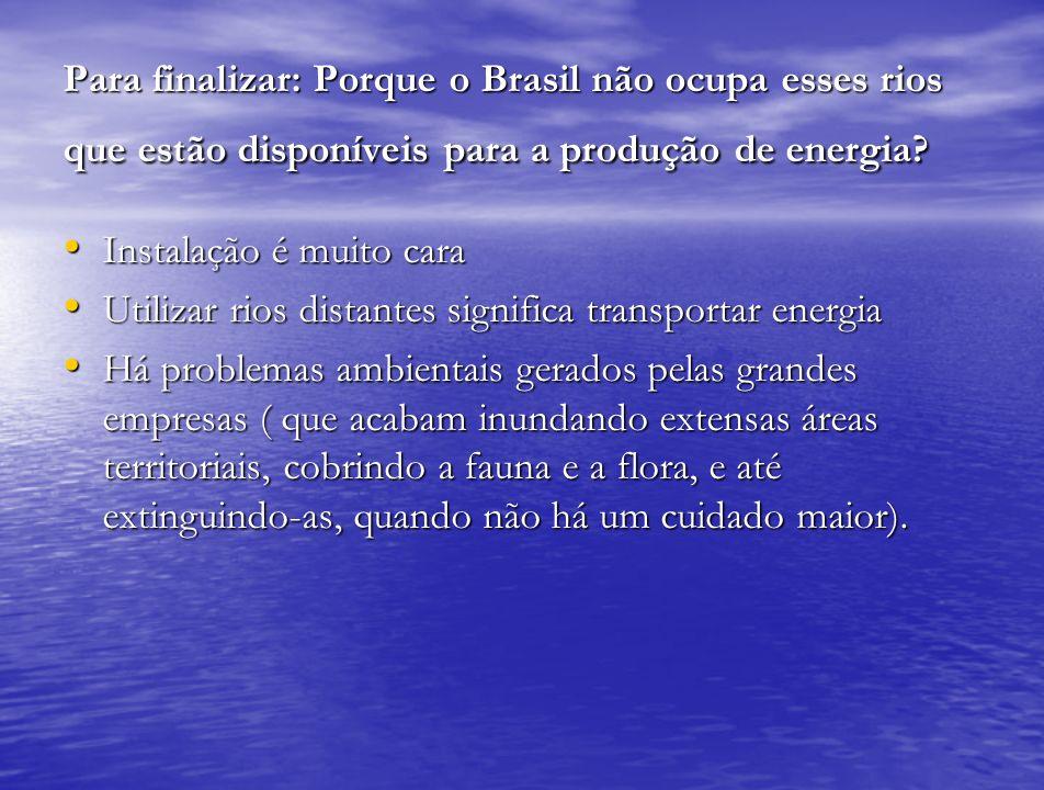 Para finalizar: Porque o Brasil não ocupa esses rios que estão disponíveis para a produção de energia? Instalação é muito cara Instalação é muito cara
