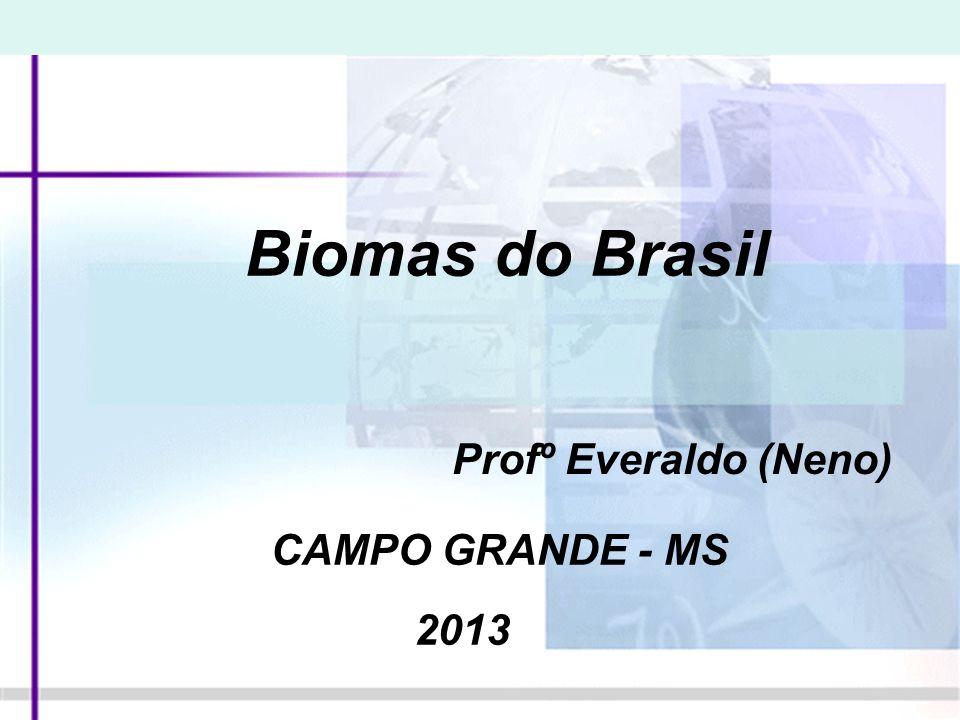 Capítulo 1 Os grandes biomas brasileiros e a Amazônia DANIEL ARANTES/SAMBA PHOTO