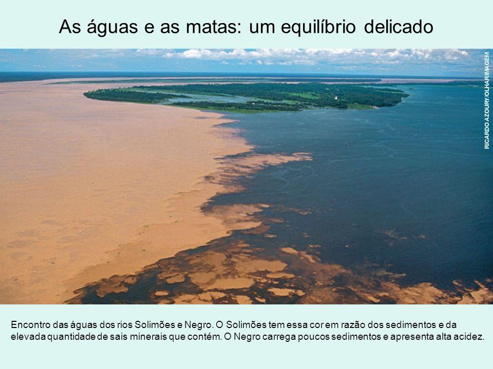 As águas e as matas: um equilíbrio delicado Encontro das águas dos rios Solimões e Negro. O Solimões tem essa cor em razão dos sedimentos e da elevada