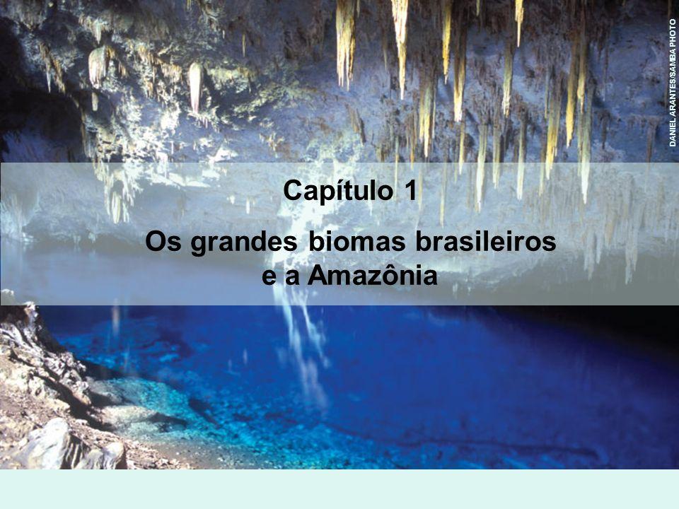 Domínios territoriais e características físicas Rios e altitudes do pampa 2 A mata atlântica e o pampa