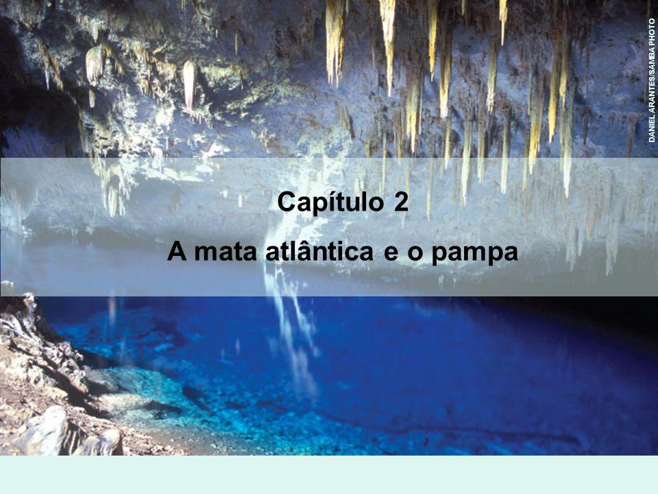 DANIEL ARANTES/SAMBA PHOTO Capítulo 2 A mata atlântica e o pampa