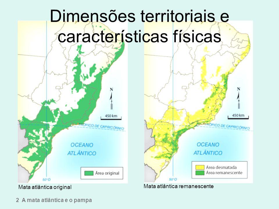 Dimensões territoriais e características físicas Mata atlântica original Mata atlântica remanescente 2 A mata atlântica e o pampa