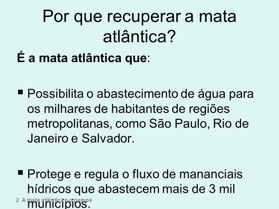 Por que recuperar a mata atlântica? É a mata atlântica que: Possibilita o abastecimento de água para os milhares de habitantes de regiões metropolitan