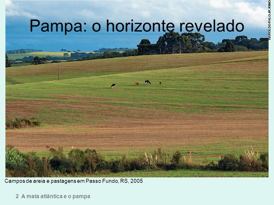 Pampa: o horizonte revelado Campos de areia e pastagens em Passo Fundo, RS, 2005 2 A mata atlântica e o pampa HAROLDO PALO JR./KINO