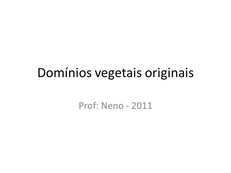 Domínios vegetais originais Prof: Neno - 2011