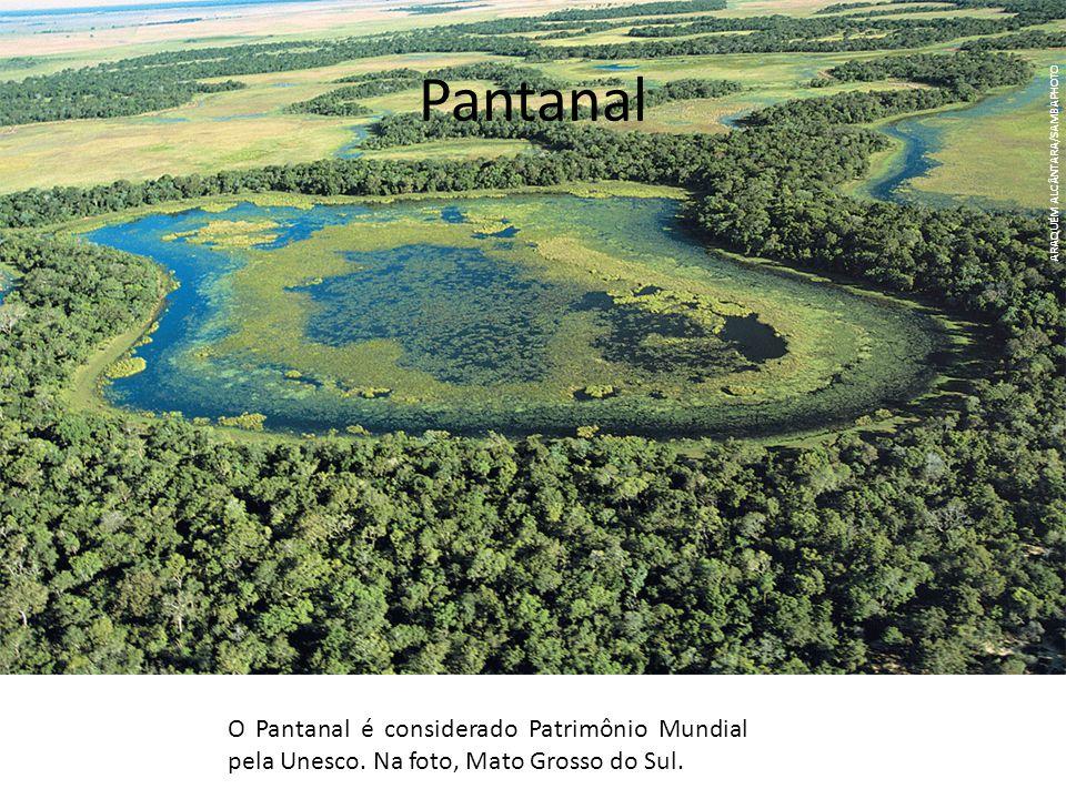 Pantanal O Pantanal é considerado Patrimônio Mundial pela Unesco. Na foto, Mato Grosso do Sul. ARAQUÉM ALCÂNTARA/SAMBAPHOTO