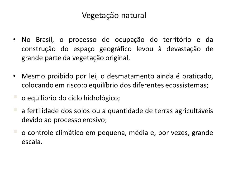 Vegetação natural No Brasil, o processo de ocupação do território e da construção do espaço geográfico levou à devastação de grande parte da vegetação