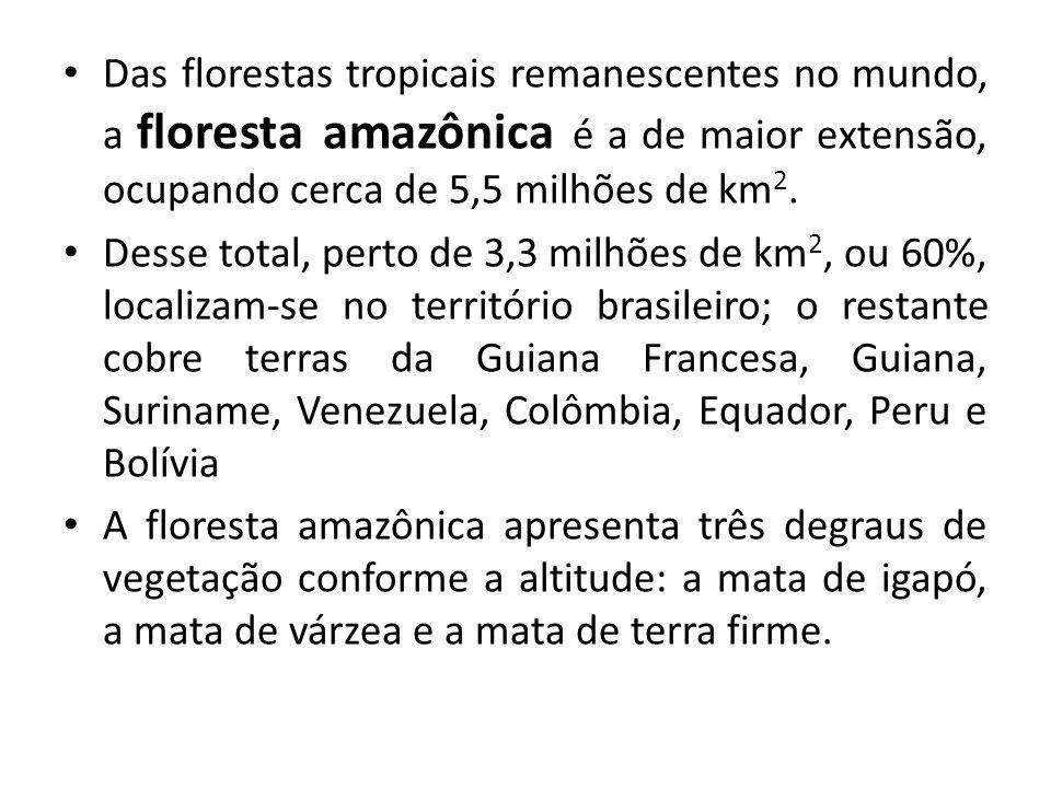 Das florestas tropicais remanescentes no mundo, a floresta amazônica é a de maior extensão, ocupando cerca de 5,5 milhões de km 2. Desse total, perto